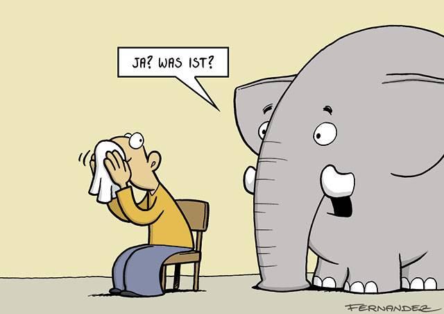 elefant_trompeten.jpg