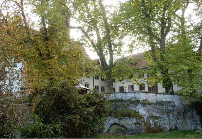 DSCN2425Schlosshof.jpg
