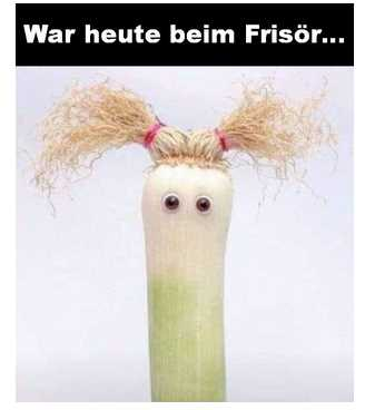 Frisr_2019-02-13.jpg