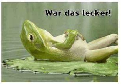 FroschBauch.jpg